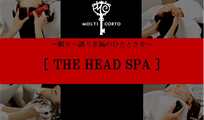 THE HEAD SPA